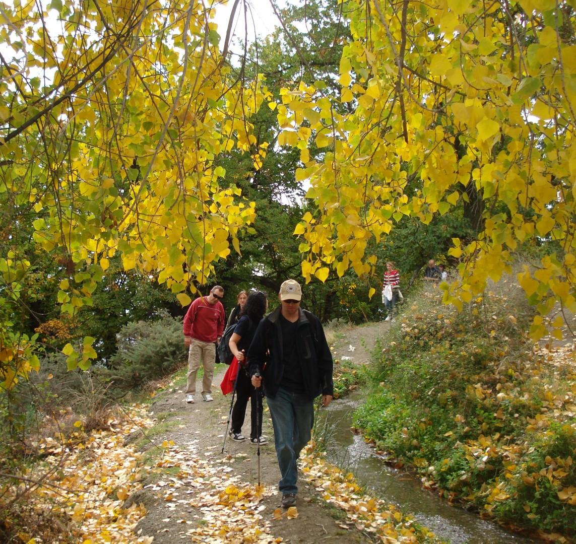 El Fin de Semana de Acuarela enriquece este año la programación del Otoño Cultural en Alpujarra de la Sierra