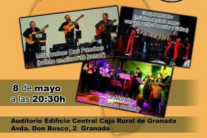 Concierto Benéfico a favor de la ONG SAPP en Granada