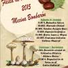FIESTAS DE LAS CASTAÑAS 2015 EN MECINA BOMBARÓN Y YEGEN