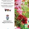 Verano cultural 2017