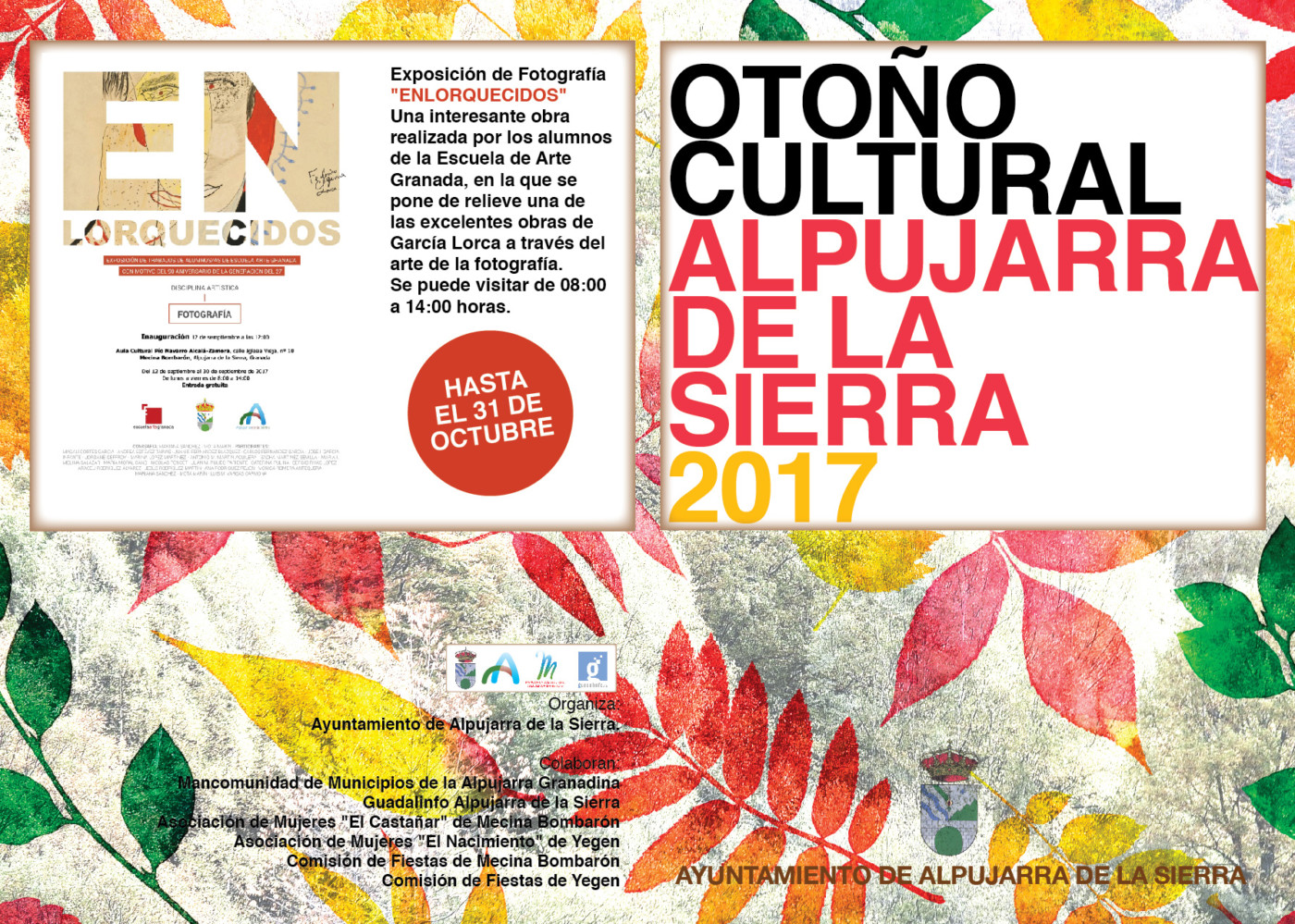 Otoño cultural 2017