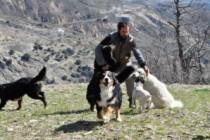 Un hotel para perros en la Alpujarra