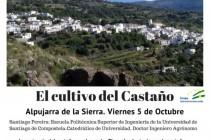 El cultivo del castaño – Viernes 5 de Octubre