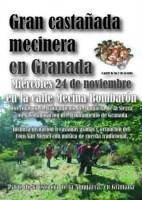 Gran castañada mecinera en Granada