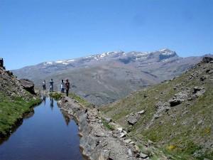 Las acequias tradicionales de las laderas de Sierra Nevada son la clave para regenerar los acuíferos.