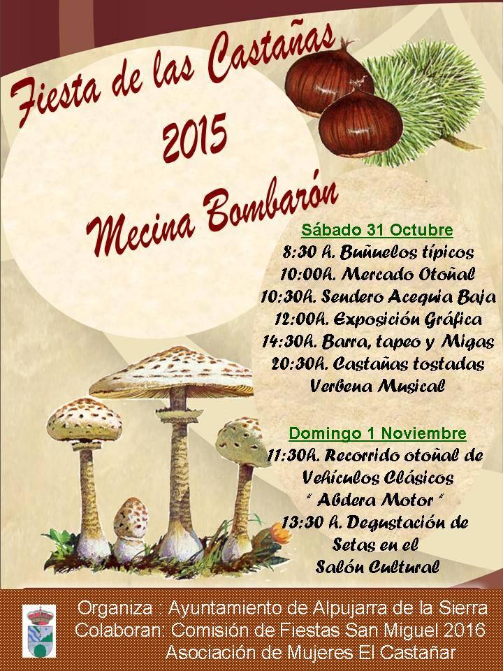 m-bombaron-fiesta-castaña-2015